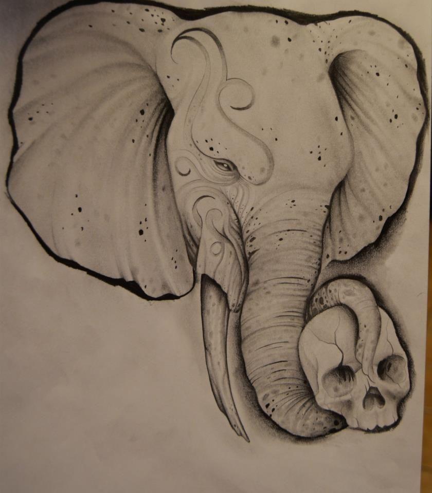 Pin de Emnah Tritar en skull | Pinterest | Elefantes, Elefante ...