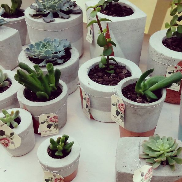 Succulents in concrete pots - awesome gift idea!