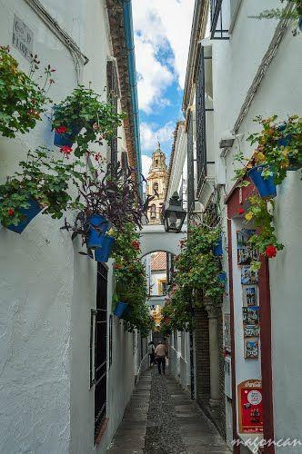Córdoba - Barrio de la Judería - Calleja de las Flores,Spain  #spain