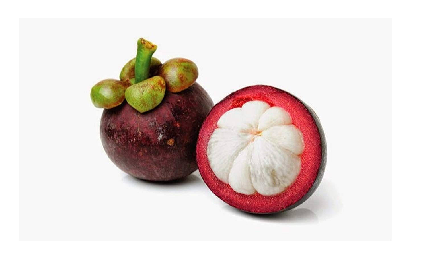 Garcinia seeds for sale
