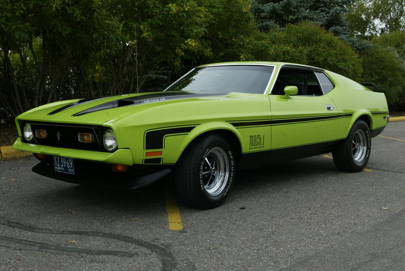 1972 mustang mach 1 1972 ford mustang mach 1 pictures 1972 ford mustang