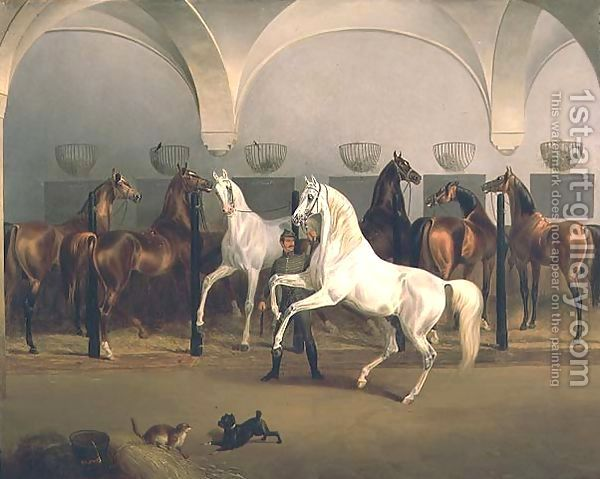 About The Breed Horse Painting Arabian Art Equine Art