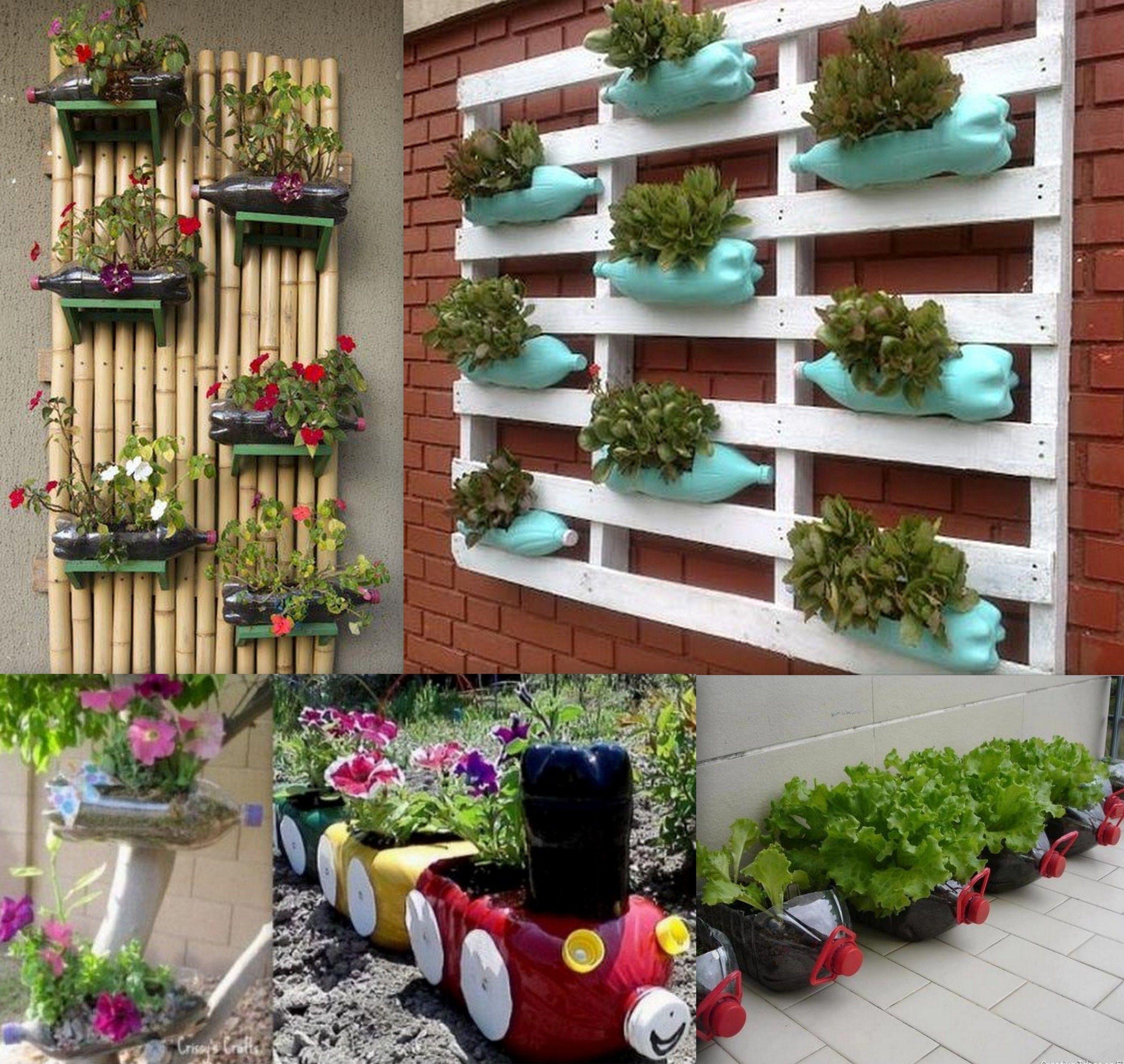 Bac A Plantes Aromatiques en ce qui concerne transformer ses bouteilles plastique en jardini�res pour herbes