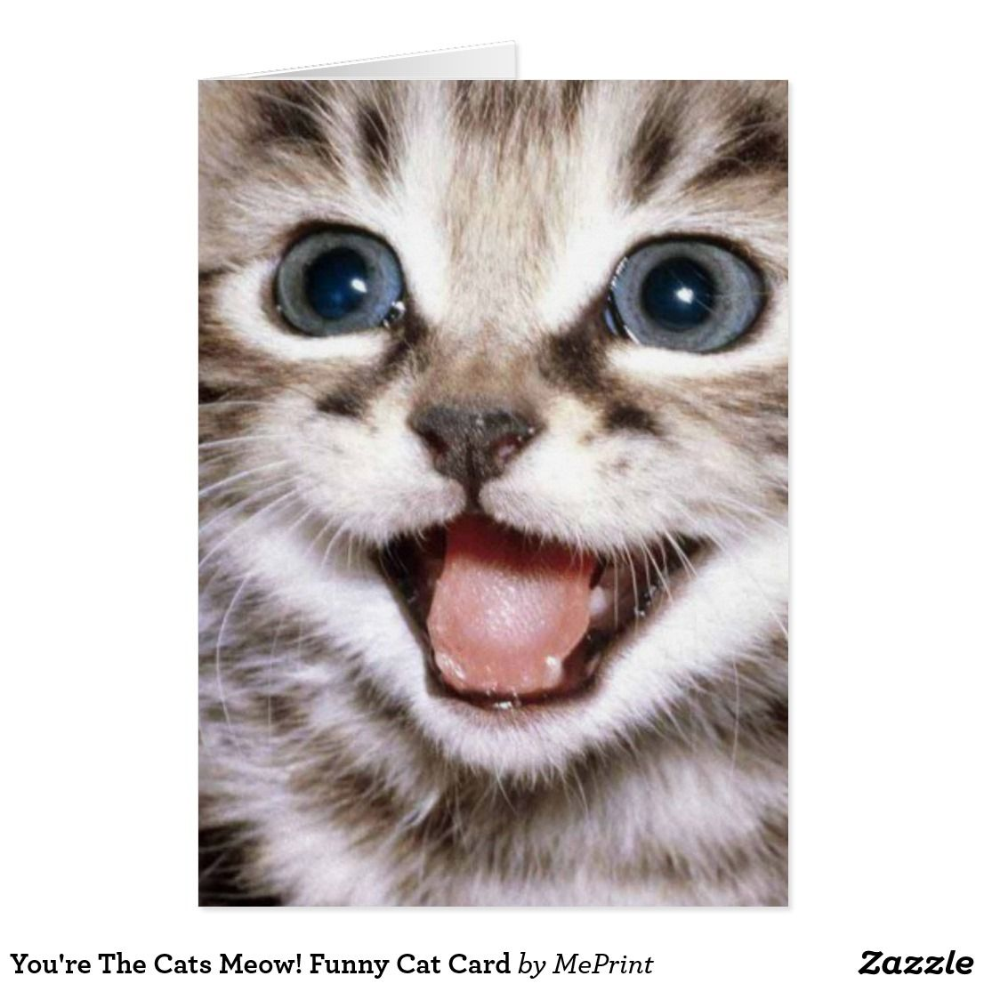 You Re The Cats Meow Funny Cat Card Zazzle Com Kittens Cutest