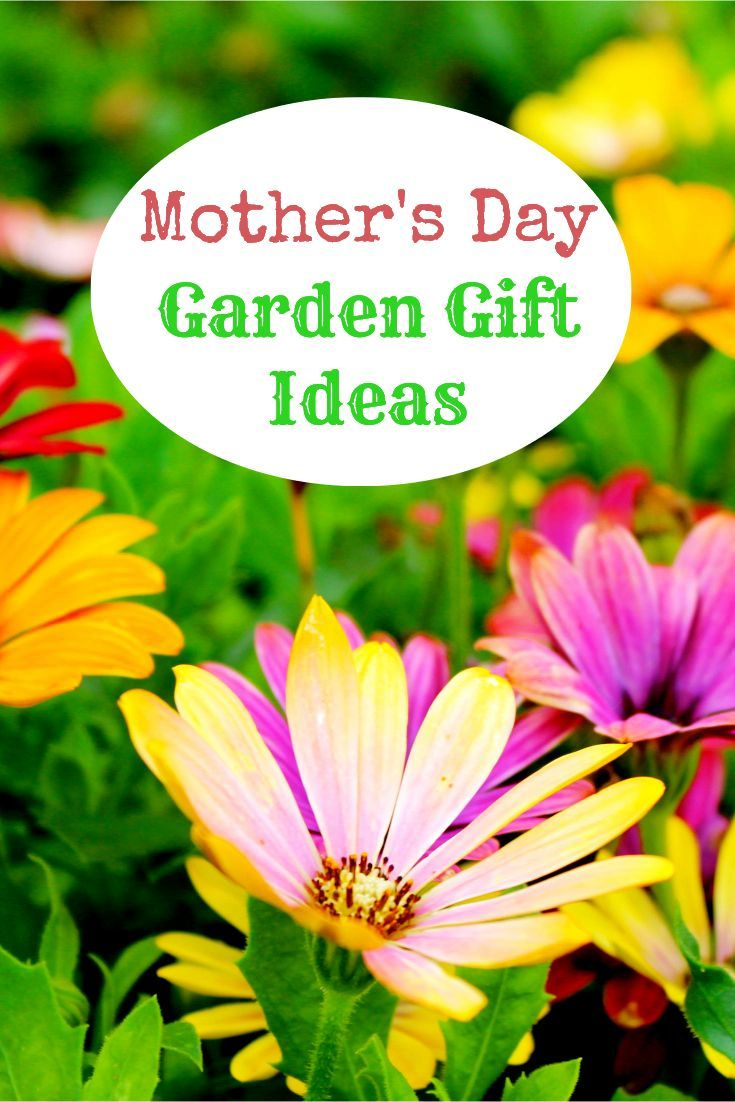 Mother\'s Day Garden Gift Ideas | Gift