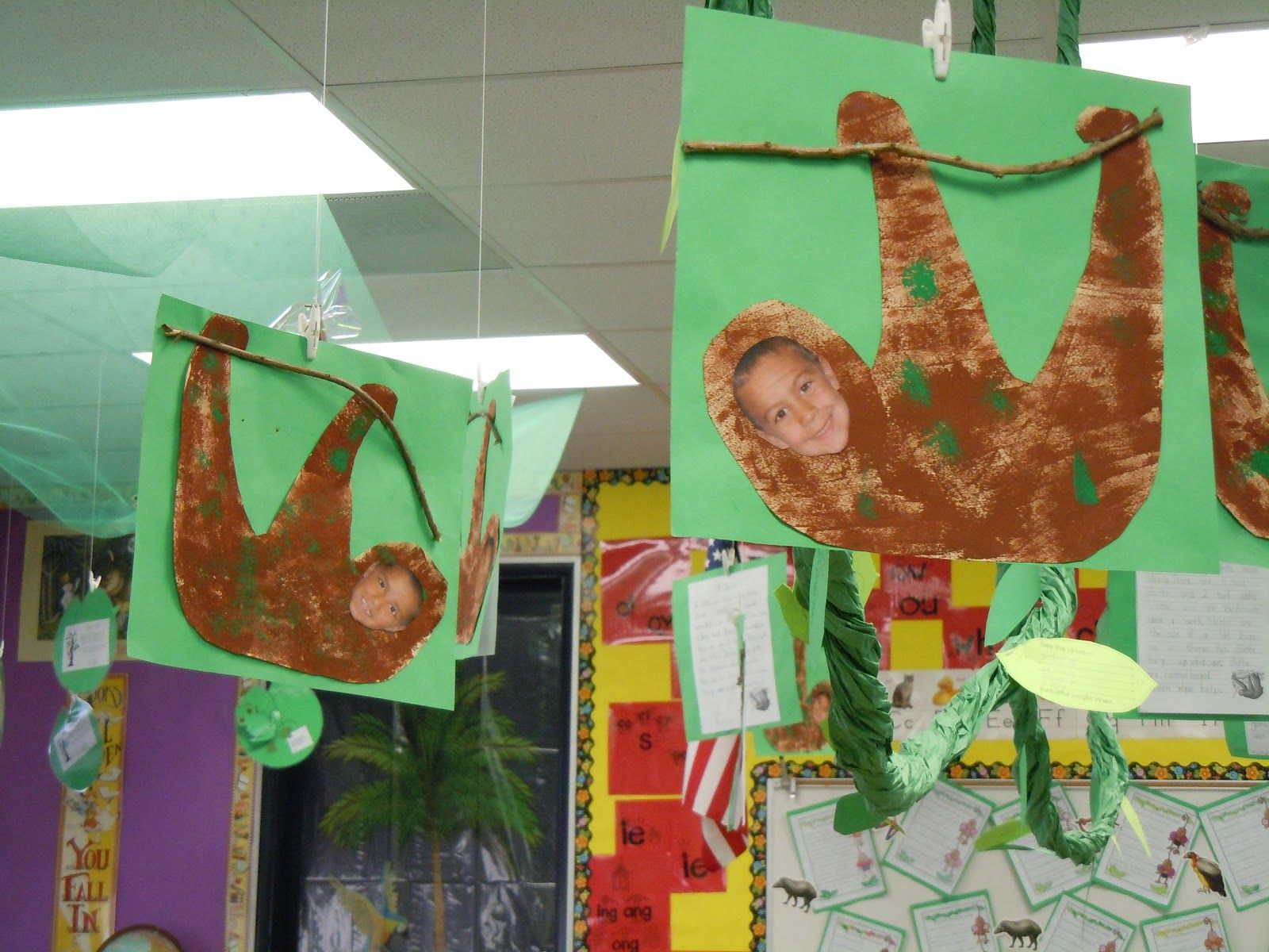 First Grade Frolics Rainforest Pictures