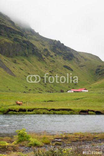 Campagne ferme islandaise Islande