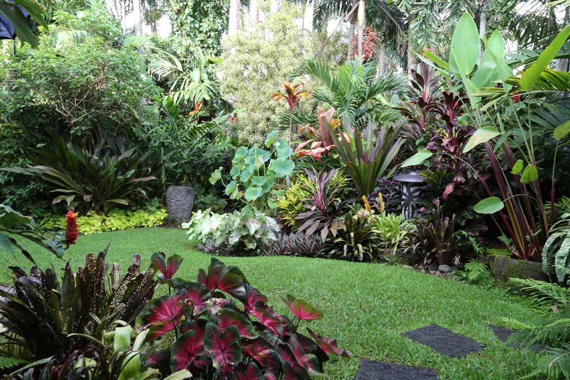 tropical garden image gallery dennis hundscheidt on attractive tropical landscaping ideas id=18471