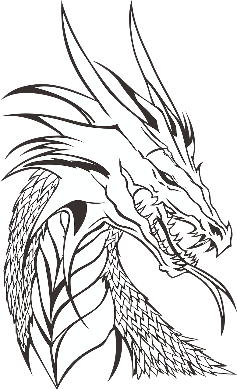Free Image on Pixabay - Dragon, No Background in 2020 ...