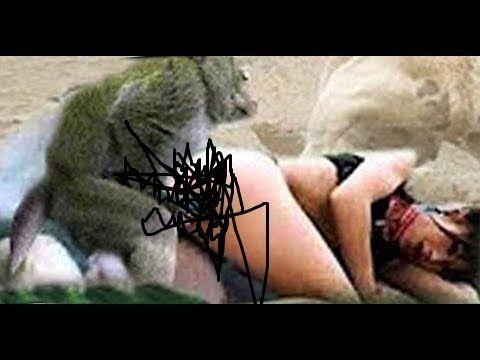 Girs monkeys sexy vidieo apologise