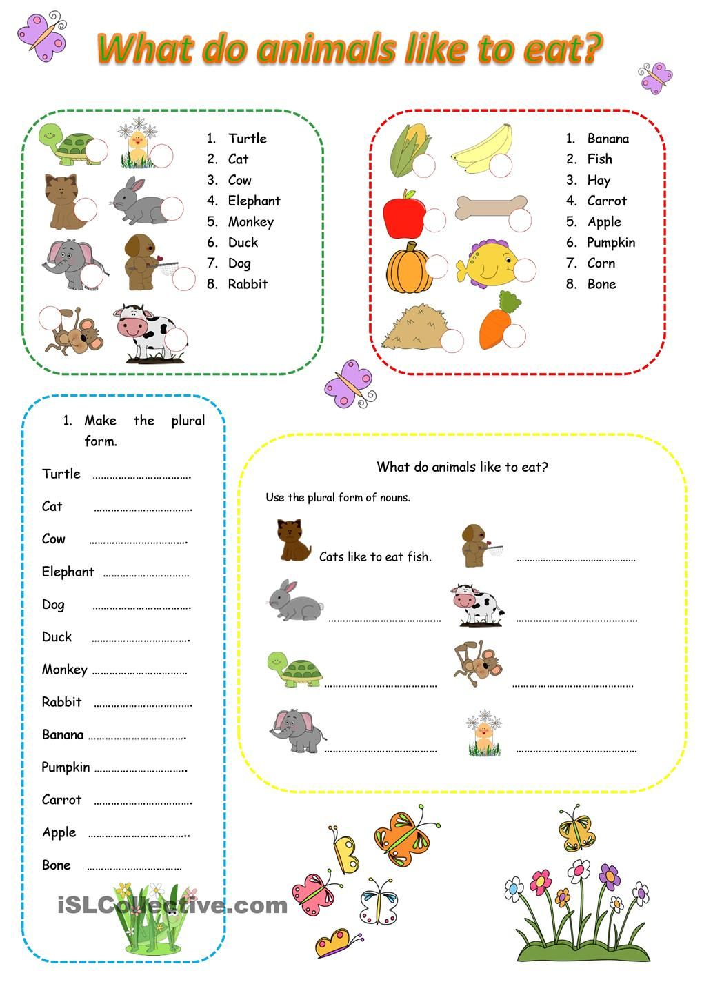 What do animals like to eat? Animal worksheets, English fun