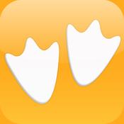 Image result for goosechase app