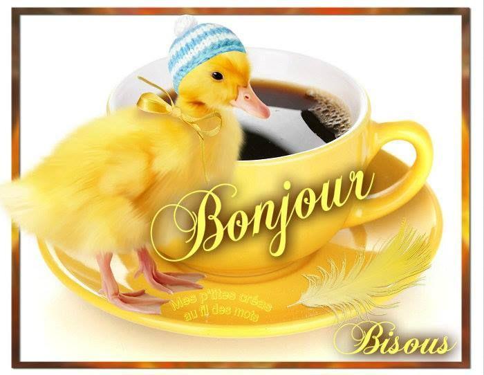 BONJOUR | Bonjour - Images, photos et illustrations gratuites pour facebook ...