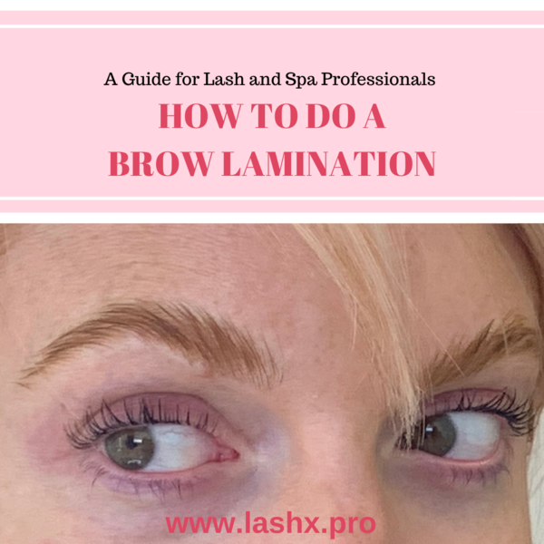 How To Do A Brow Lamination I Best Brow Laminationtutorial I Lashx Brow Lamination Kit With Images Brows Brow Serum Eyebrow Extensions