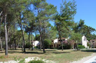 Zaton Holiday Resort in Zaton (Zadar) • HolidayCheck | Dalmatien, Kroatien