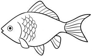 999 Fish Clipart Black And White Free Download Cloud Clipart Buku Mewarnai Gambar Hewan Ikan