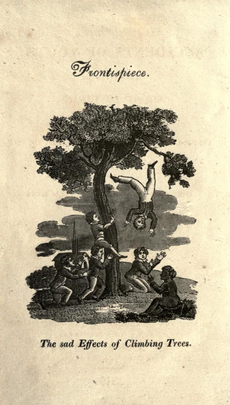 The Accidents of Youth: The Sad Effects of Climbing Trees | The