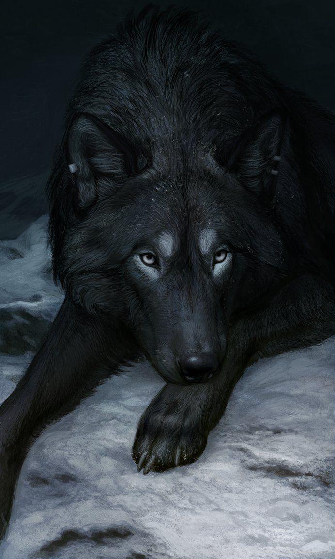 Photo of Drawn spirit wolf # 8 #dog drawn