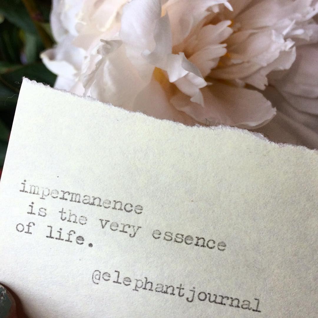 Impermanence Is Elephantjournal Daily Inspiration Pinterest