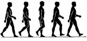 change your walk