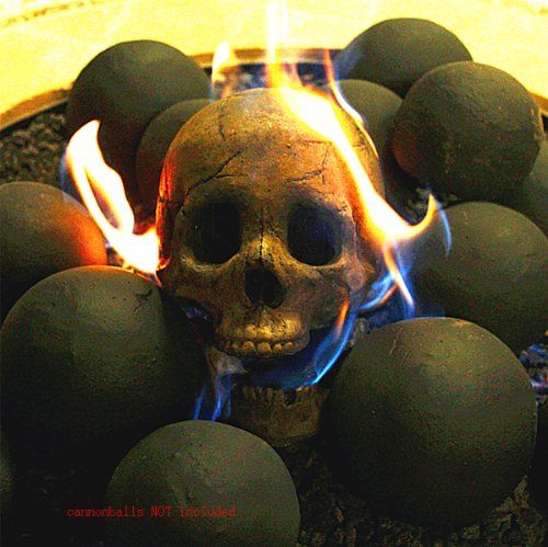PayandPack DELUXE Logs - Imitated Human Skull Fire Gas Log for ...