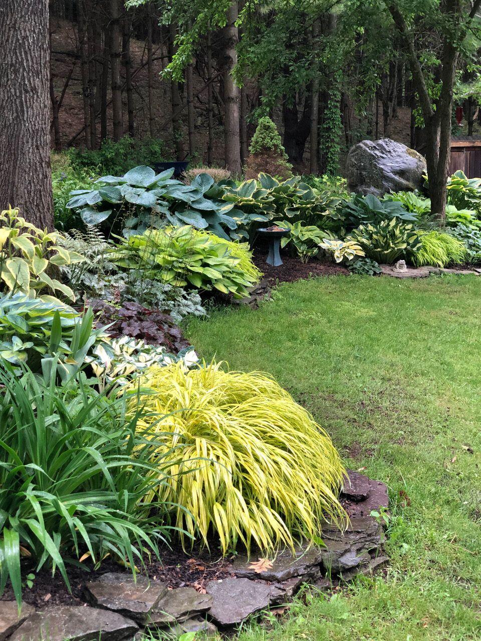 Shelley's Upstate New York Garden   FineGardening