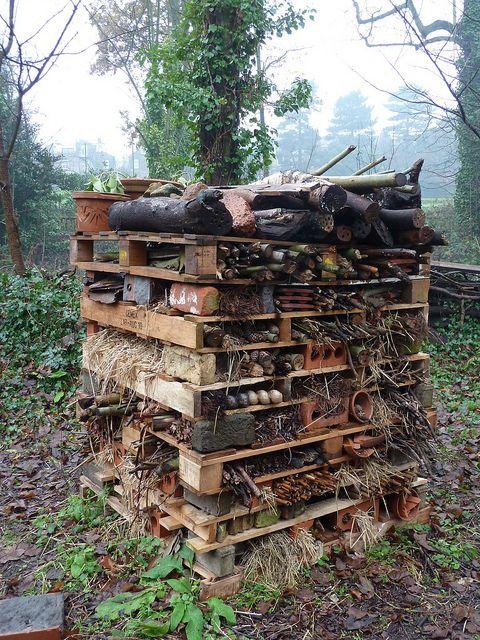 Fabriquer un hôtel à insectes dans son jardin | Hôtel à ...