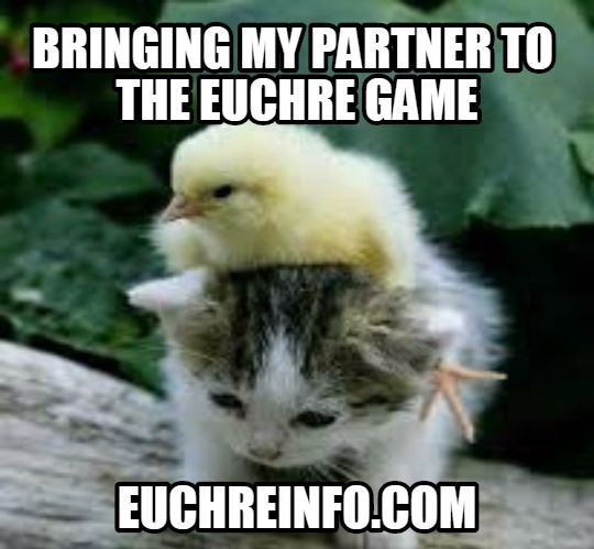 Bringing my partner to the Euchre game.
