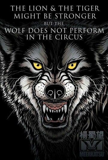 Wolf quote. wolf wolfart digitalart vector vectorart