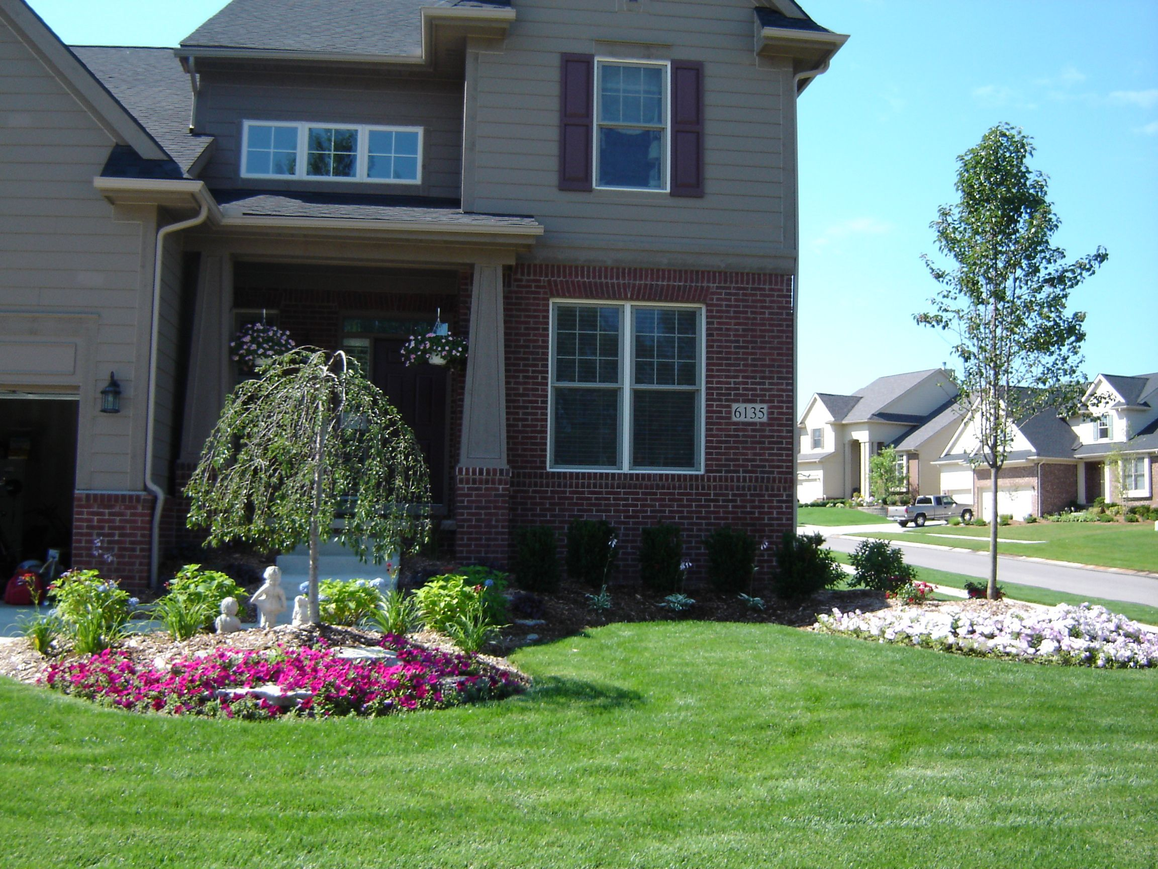 Front yard landscaping, Weeping Cherry and Bradford Pear tree ...