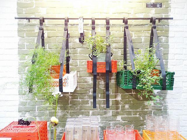 Auf der Mammilade|n-Seite des Lebens: Botanical Zoom | Ein botanischer GLÜCKblick auf Paris, die Ambiente und in meinen heimischen Dschungel