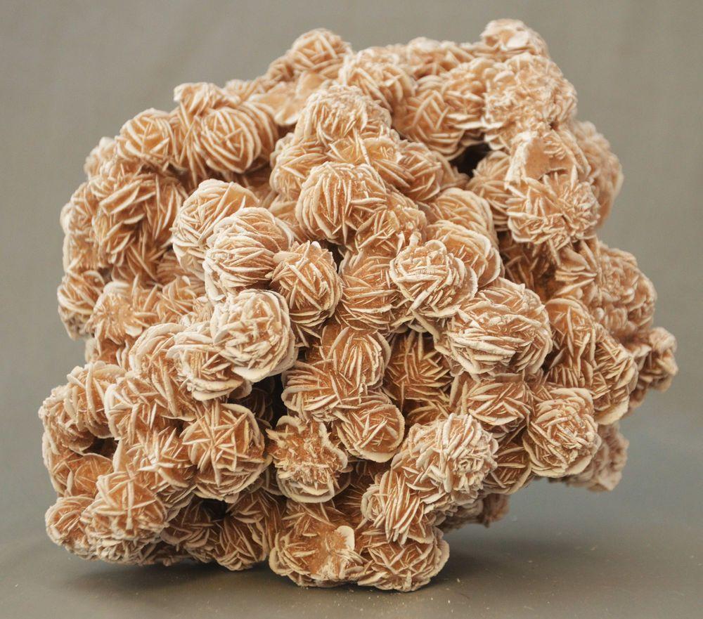 selenite desert rose samalayuca chihuahua mexico 3 lb 3 oz specimen rose des sables rose. Black Bedroom Furniture Sets. Home Design Ideas