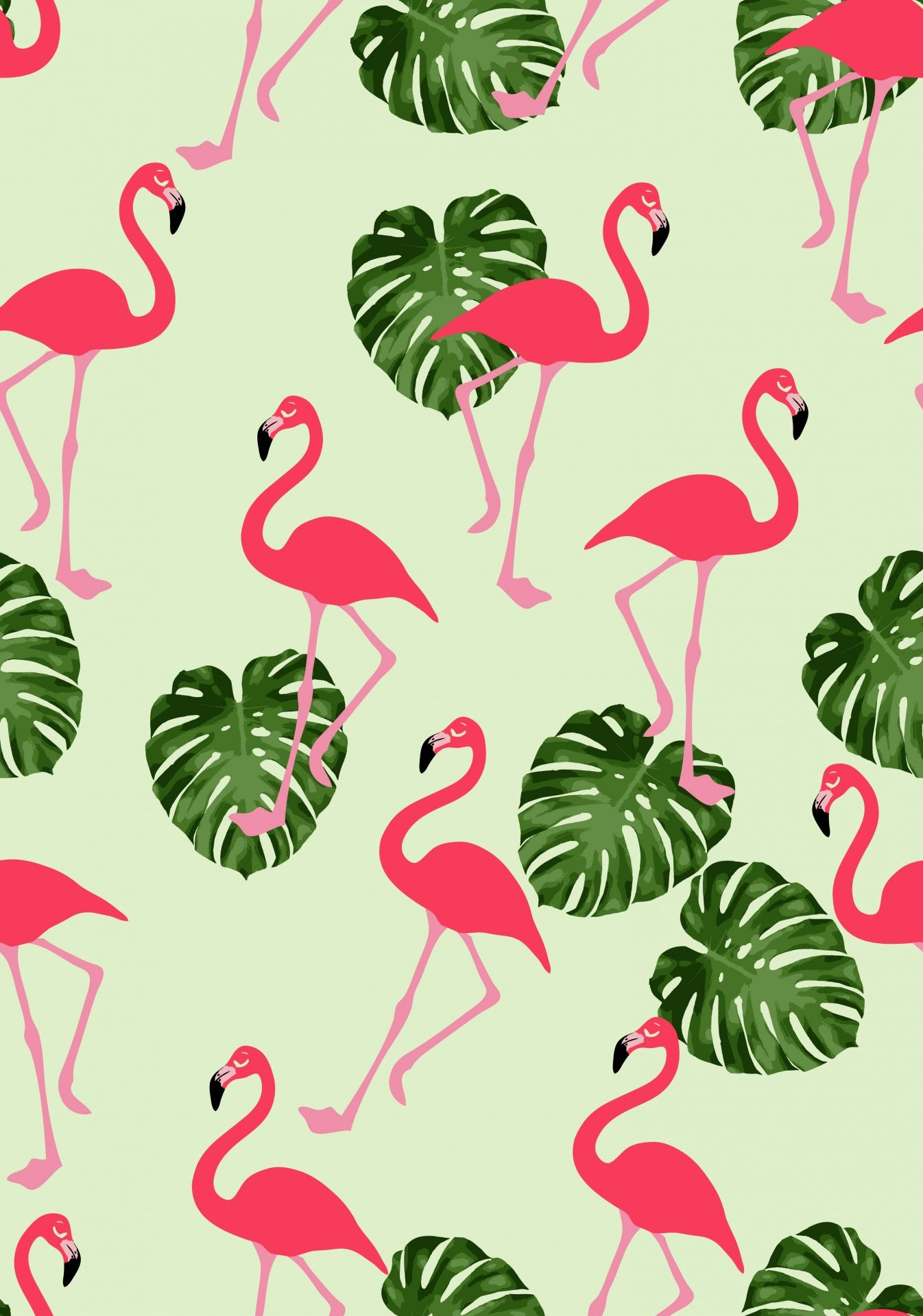 Afbeeldingsresultaat voor flamingo wallpaper Iphone