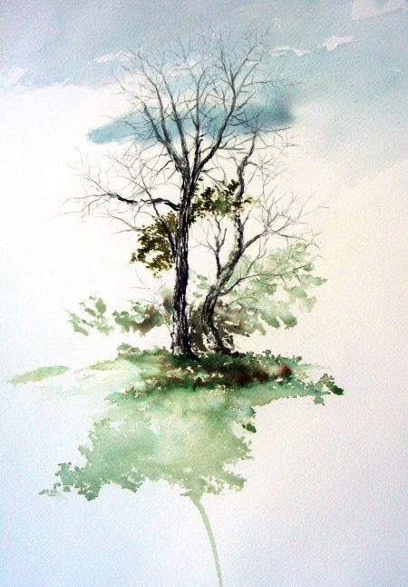 David Tripp Baum Kleines Aquarell Arbres En Aquarelle Peinture