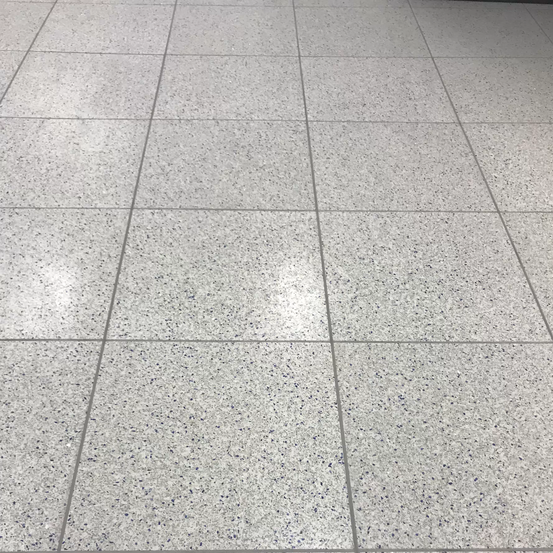 Watch Terrazzo Tiles Commercial Institutional Industrial Tile Installation Terrazzo Tile Tiles