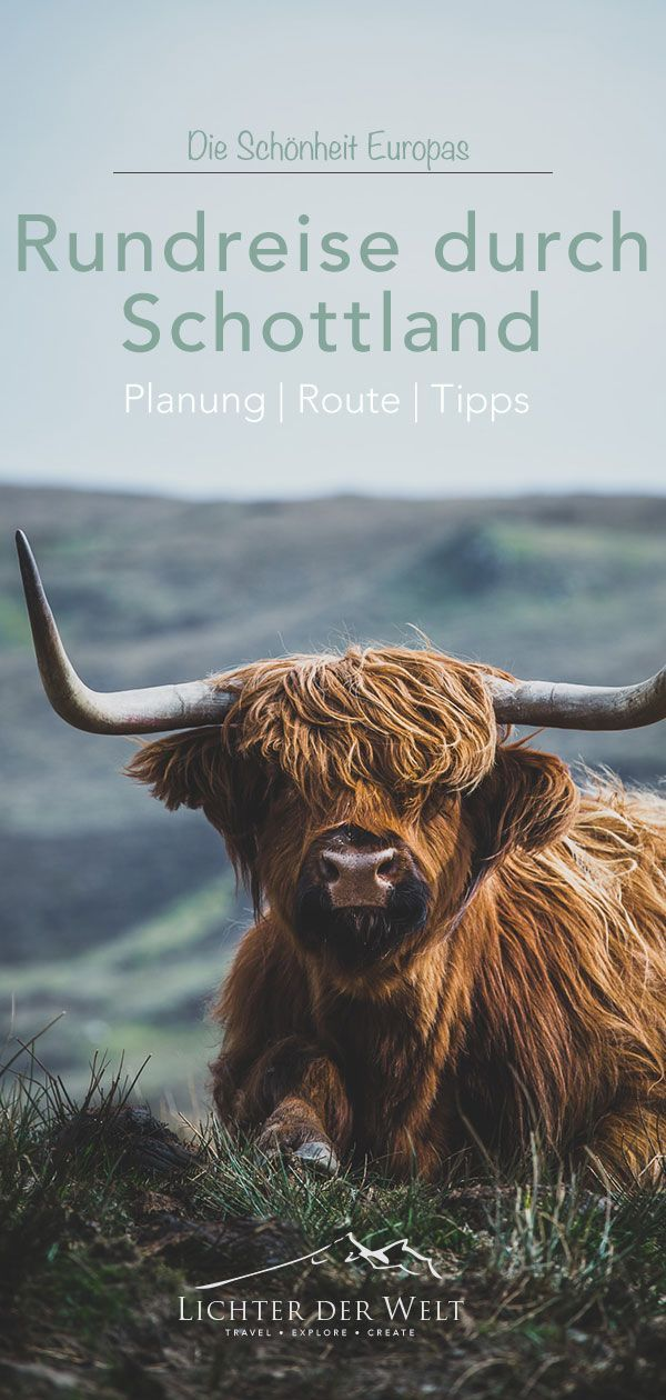Photo of Scotland round trip – planning, tips and wonderful spots