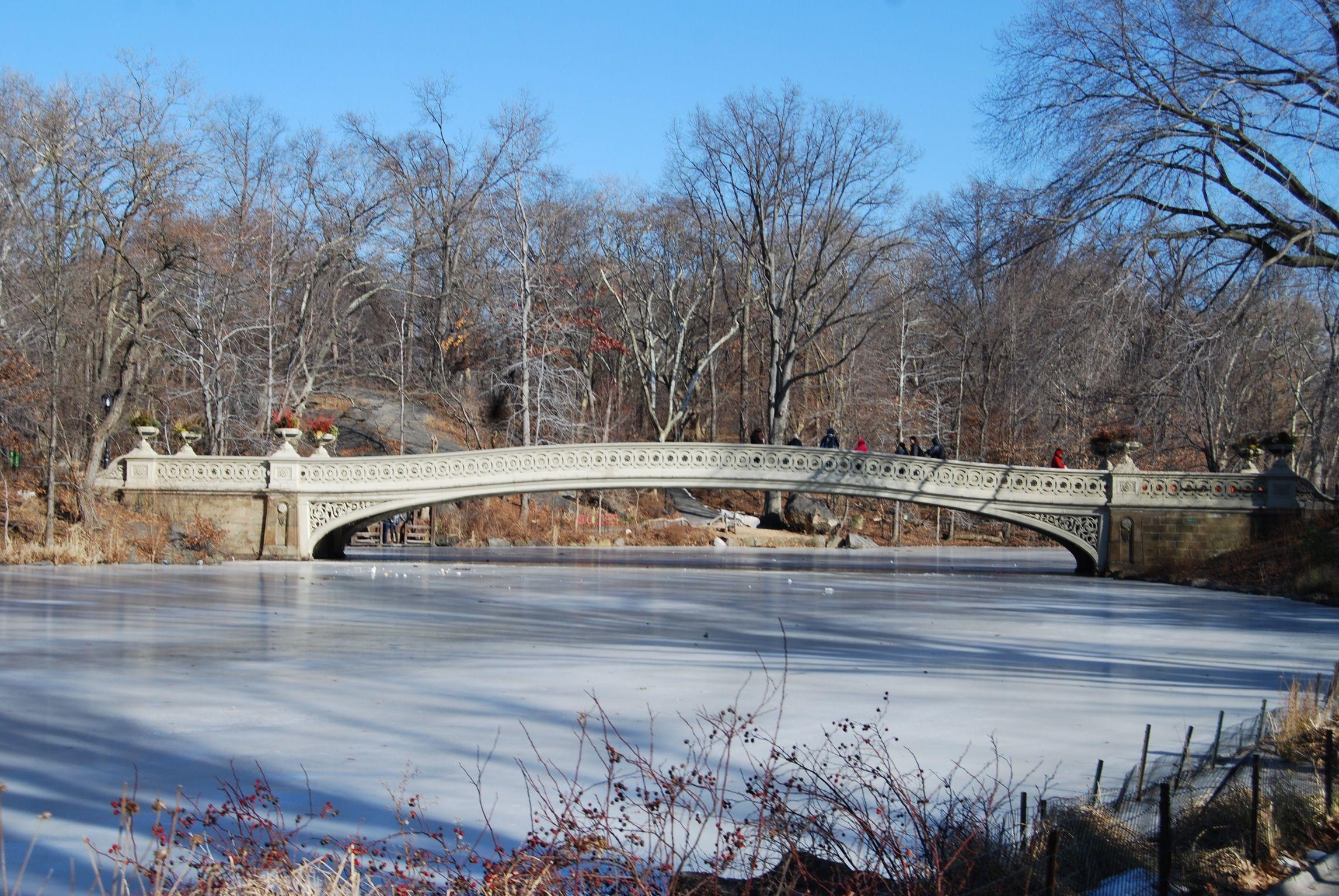 Central Park #winter #nyc #ny #newyork #manhattan #ice #cold #bridge