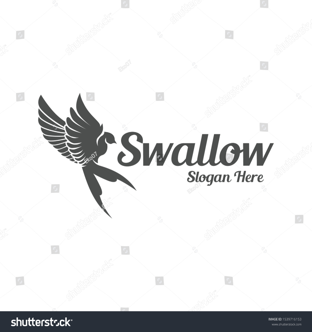 swallow bird vintage flying logo business stock vector royalty free 1539716153 in 2020 logo design collection business stock images swallow bird pinterest