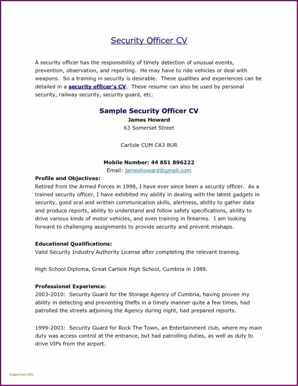 Security Daily Activity Report Template in 2020 Security