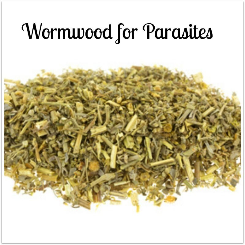 When Combined With Cloves And Black Walnut Wormwood Is Said To Be