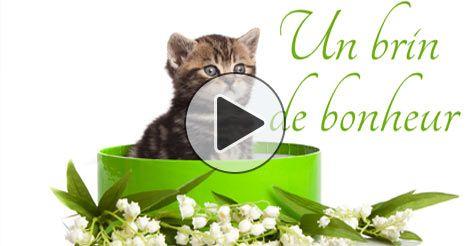 Muguet 1er mai et brin de muguet porte bonheur gratuit citations pinterest muguet 1er mai - Image muguet 1er mai gratuit ...