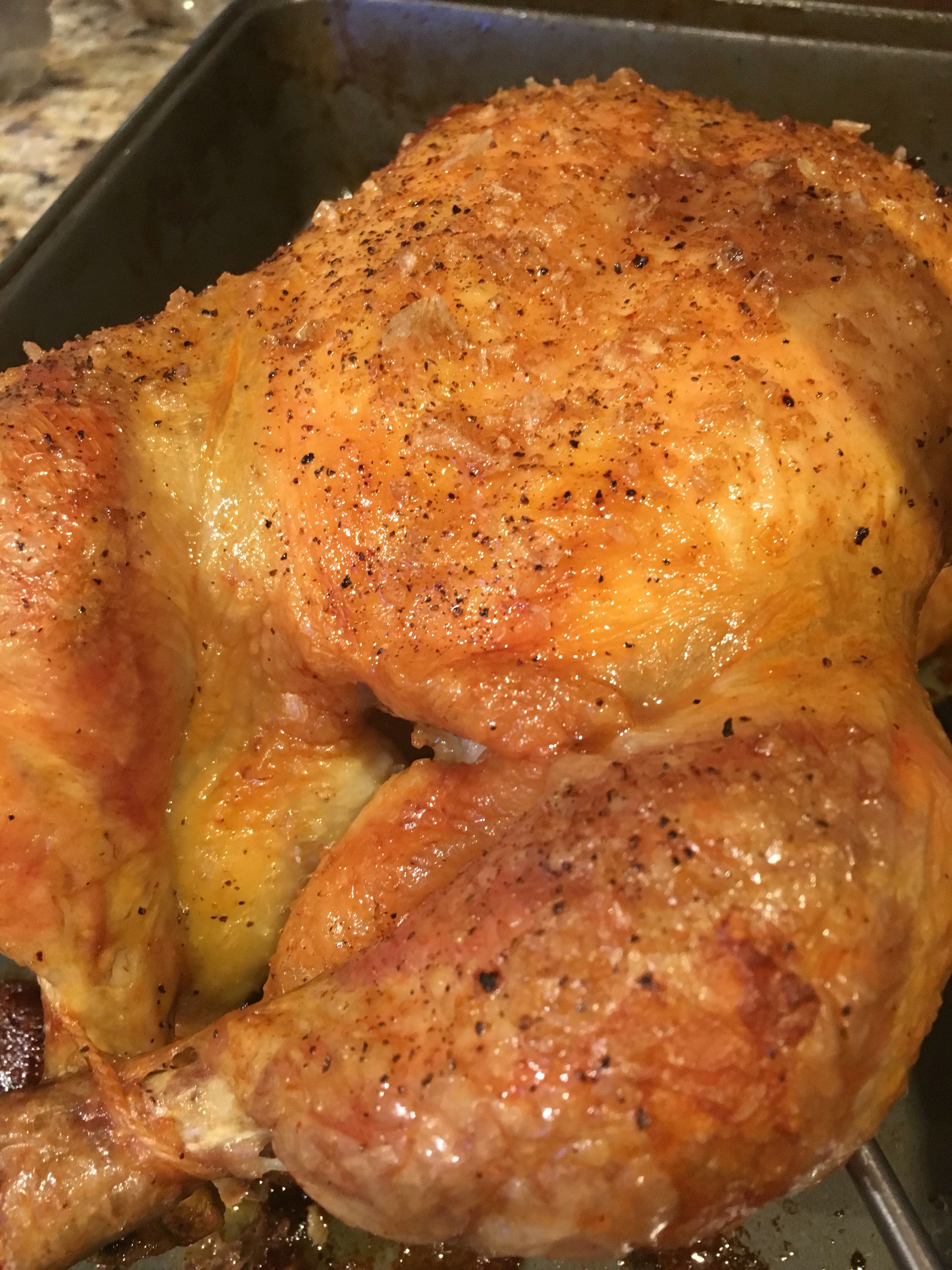 Thebestroastedchickenever  Cluck Cluck  Whole -2285
