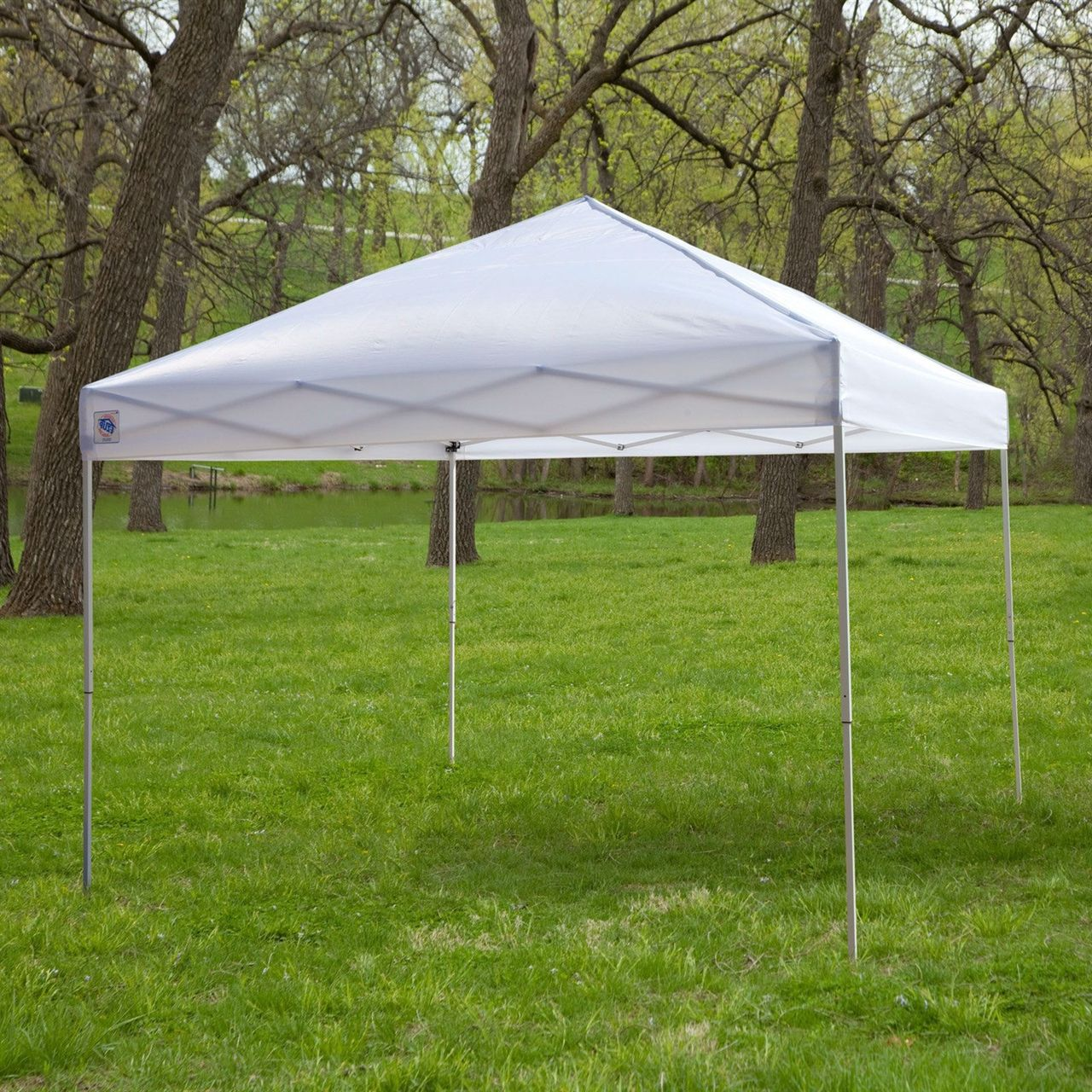 White 10-Ft x 10-Ft Outdoor Canopy Tent Gazebo, Steel Frame, Carry ...