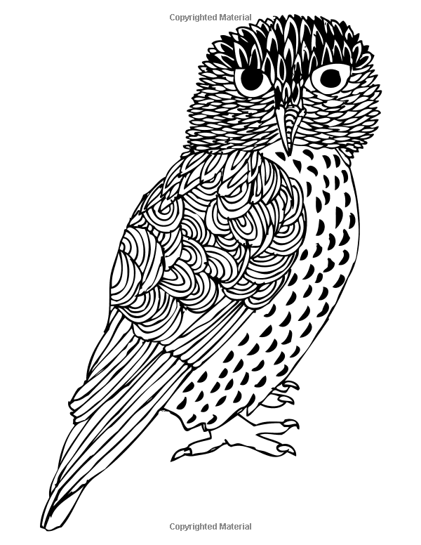 Owls Coloring Book: A Stress Management Coloring Book For Adults (Adult Coloring Books) (Volume 2): Adult Coloring Books, Penny Farthing Graphics: 9781514356869: Amazon.com: Books