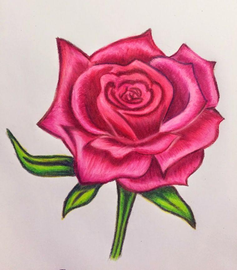 Schizzo Colorato Con Matite Disegno Di Una Rosa Fiori Facili Da Disegnare Disegni Di Rose Disegno Di Una Rosa Disegni A Pastello