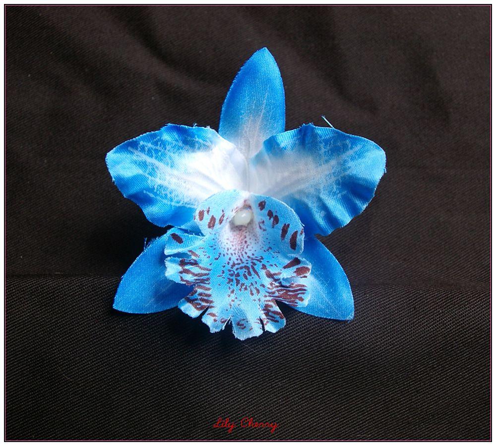 orchidee bleue devient blanche