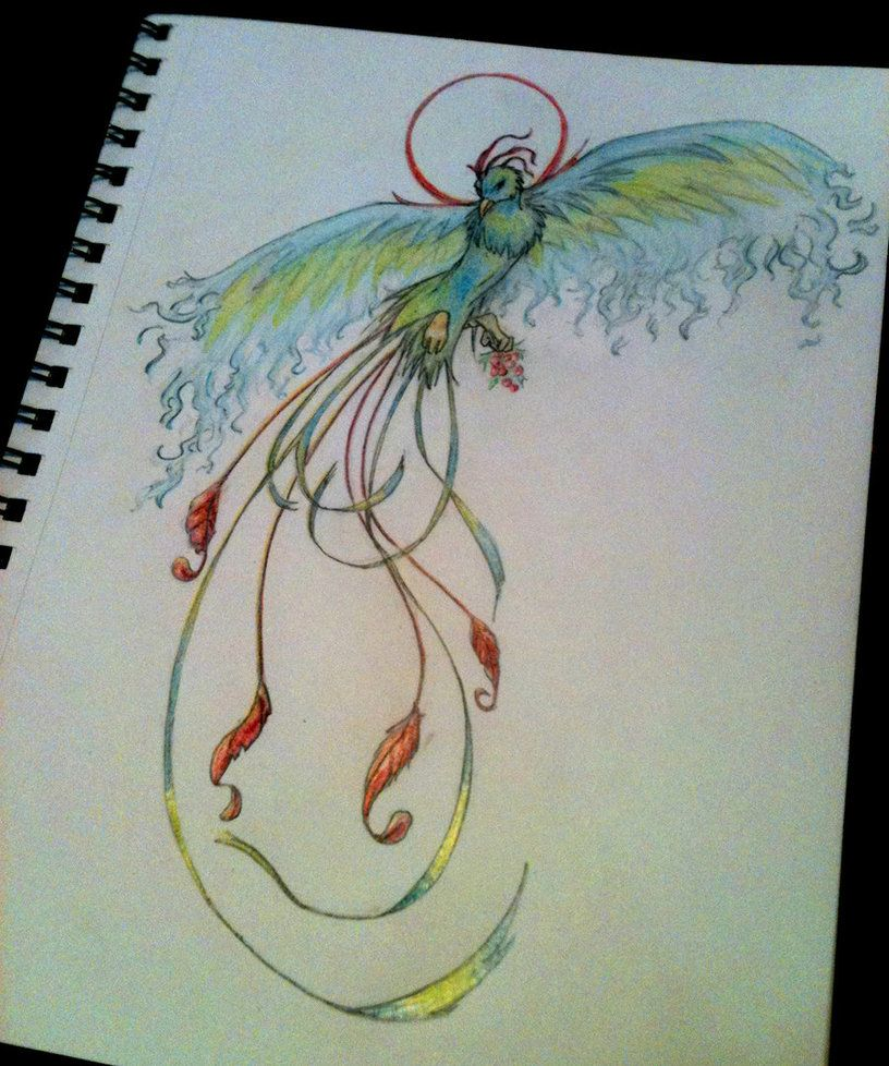 Phoenix symbol of rebirth by thedamndestcreatureiantart phoenix symbol of rebirth by thedamndestcreatureiantart on deviantart buycottarizona