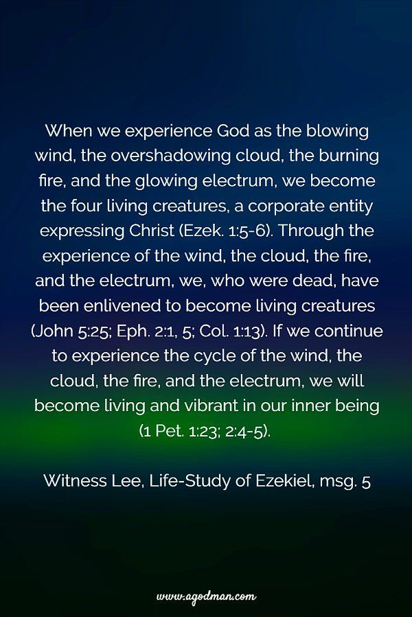 When we experience God as the blowing wind, the overshadowing cloud, the burning fire, and the glowing electrum, we become the four living creatures, a corporate entity expressing Christ (Ezek. 1:5-6). Through the experience of the wind, the cloud, the fire, and the electrum, we, who were dead, have been enlivened to become living creatures (John 5:25; Eph. 2:1, 5; Col. 1:13). If we continue to experience the cycle of the wind, the cloud, the fire, and the electrum, we will become living…