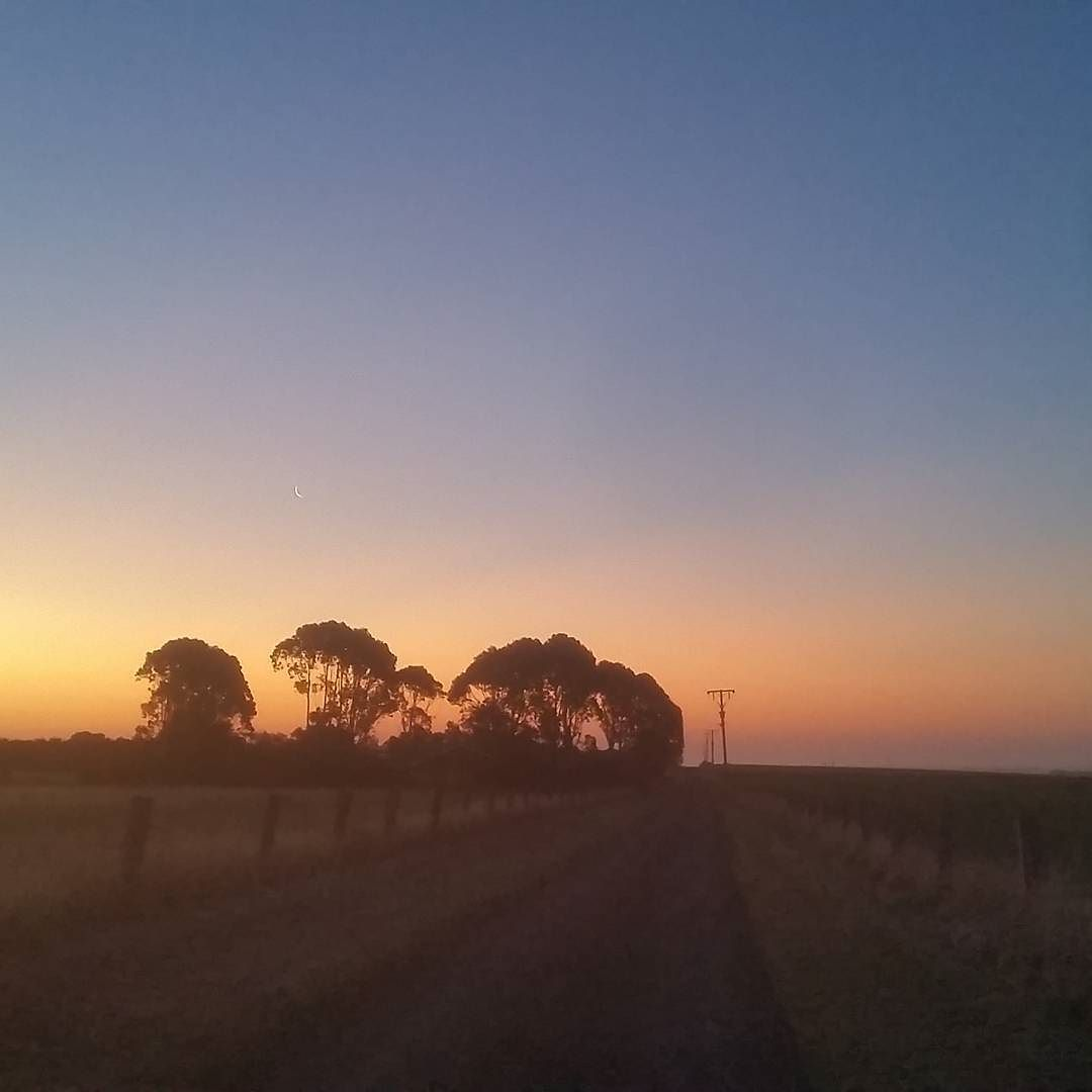 Evening walks in the country are the best  #koroit #walk #sunset #thatsky #country #victoria #moon by confetti_b