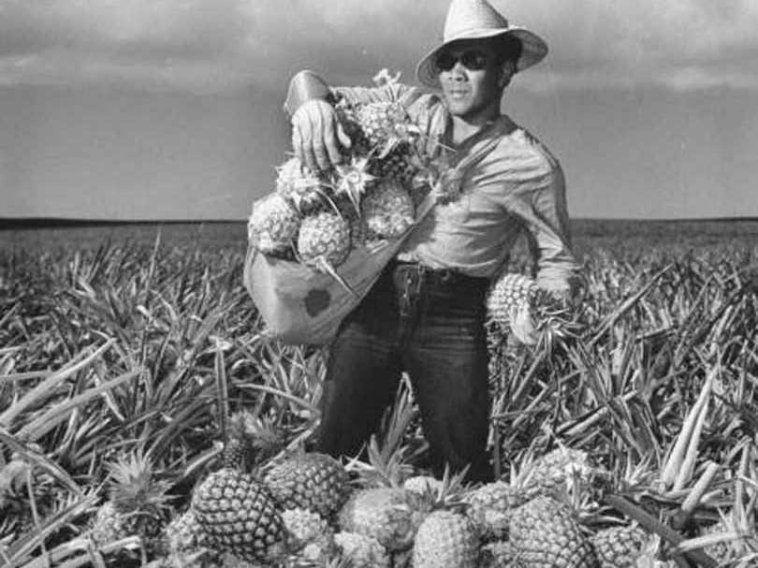 Dating a hawaiian man